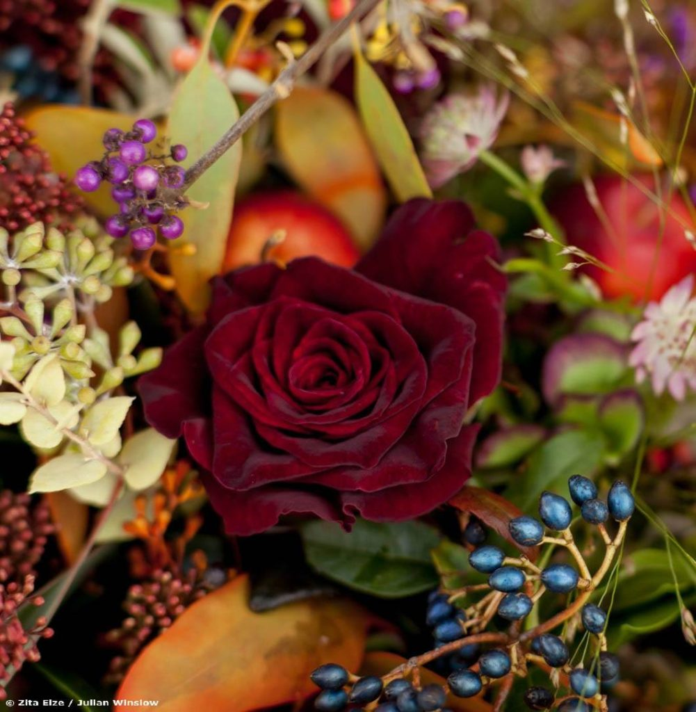 Zita Elze Flowers autumn bouquet photo Julian Winslow