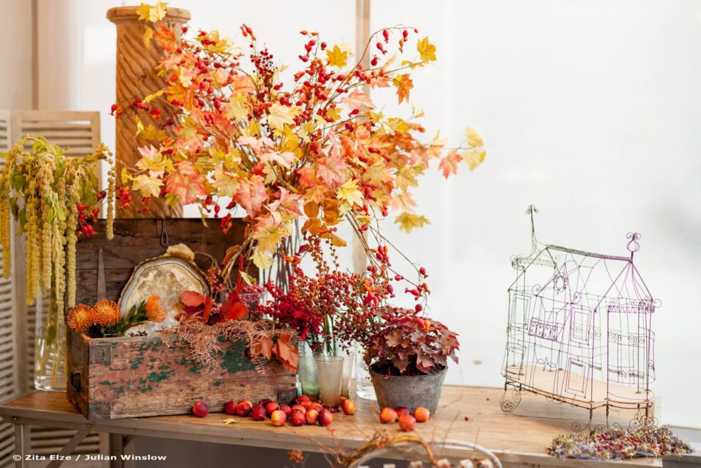Zita Elze Flower Shop Autumn window display photo: Julian Winslow-lp-29_wm