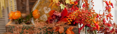Zita Elze Autumn Thanksgiving pic: Julian Winslow